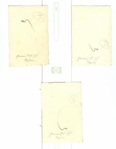 Capua genn-1938 foto 1,2,3 RETRO
